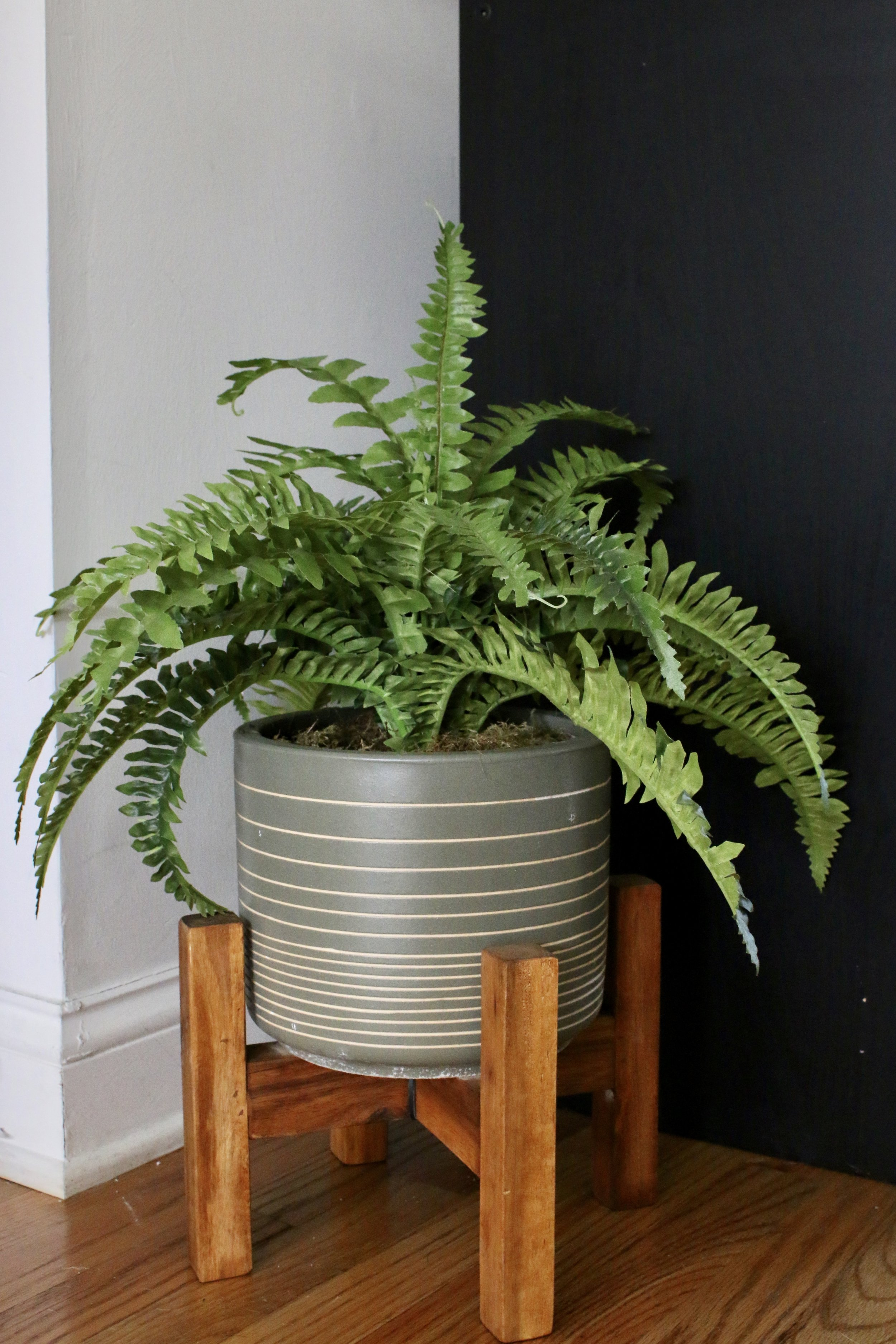 Here's another faux plant from Home Sense