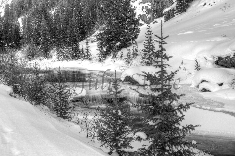 Winter on the Animas, Colorado 2013