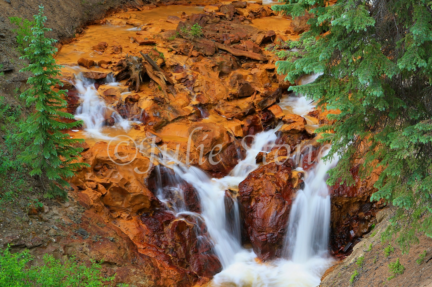 Red Mountain Waterfall 2013 (6)