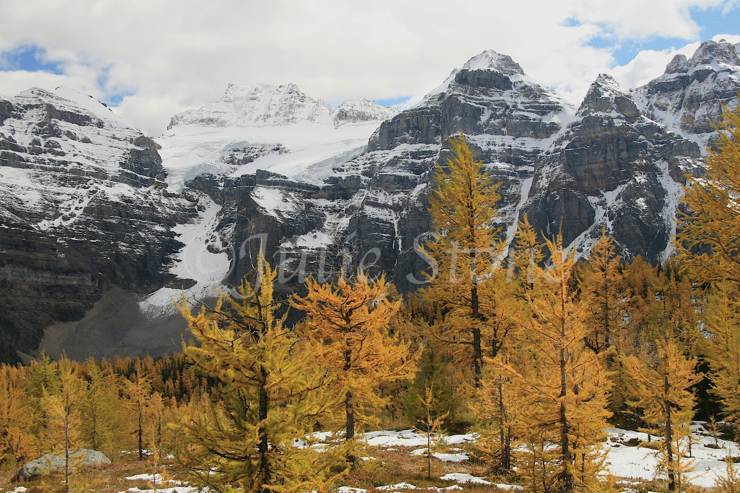 Valley of Ten Peaks Larch Trees (2006)