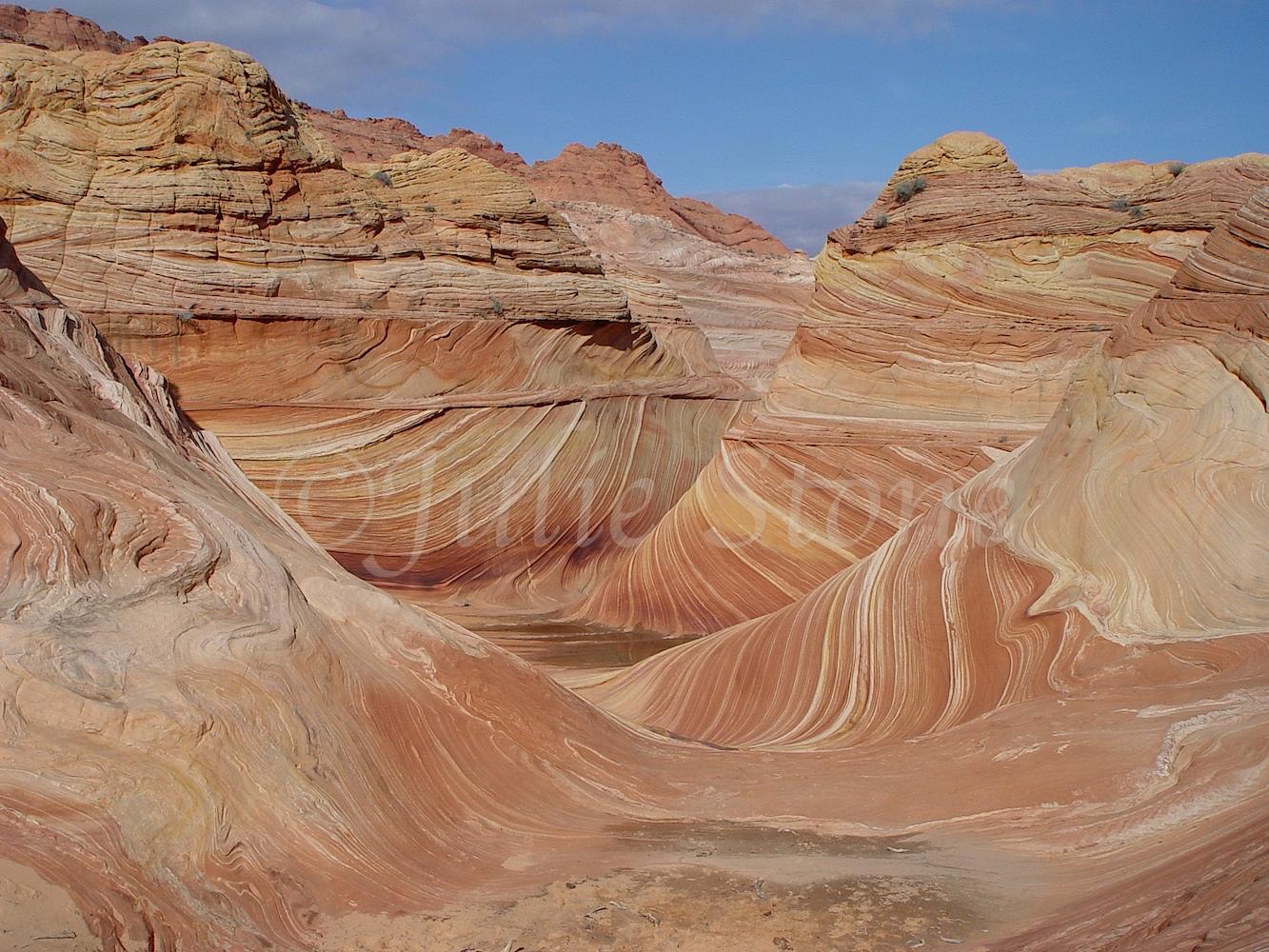 Paria Canyon-Vermilion Cliffs Wilderness/The Wave 2003