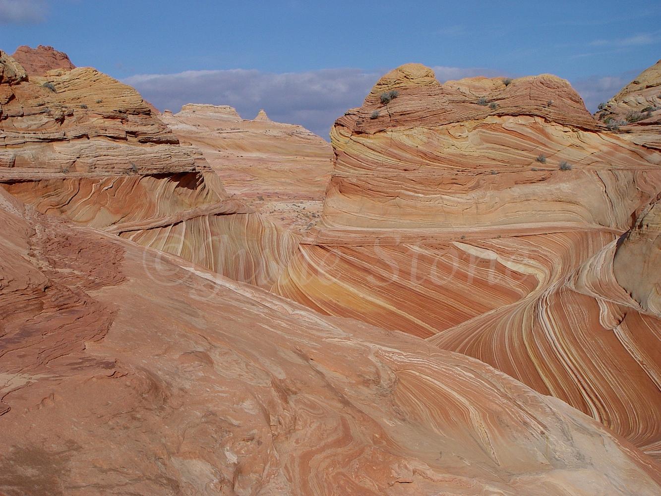Paria Canyon-Vermilion Cliffs Wilderness/The Wave 2003  (2)