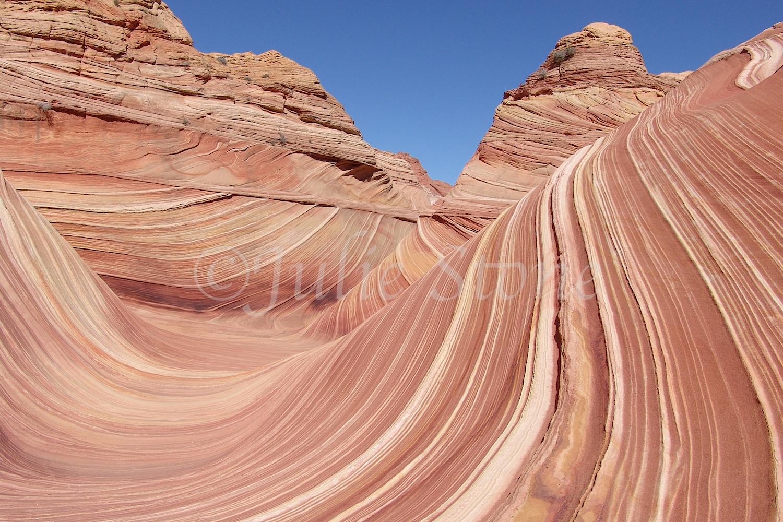 Paria Canyon-Vermilion Cliffs/The Wave 2007 (2)