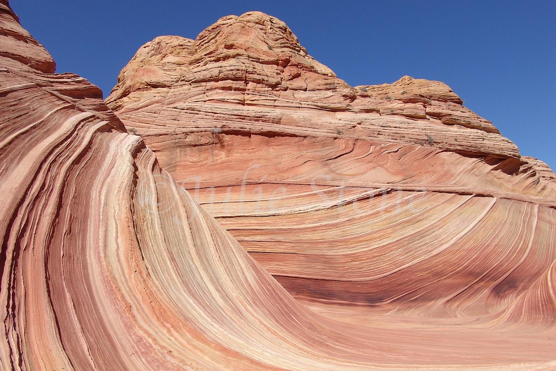 Paria Canyon-Vermilion Cliffs/The Wave 2007 (5)