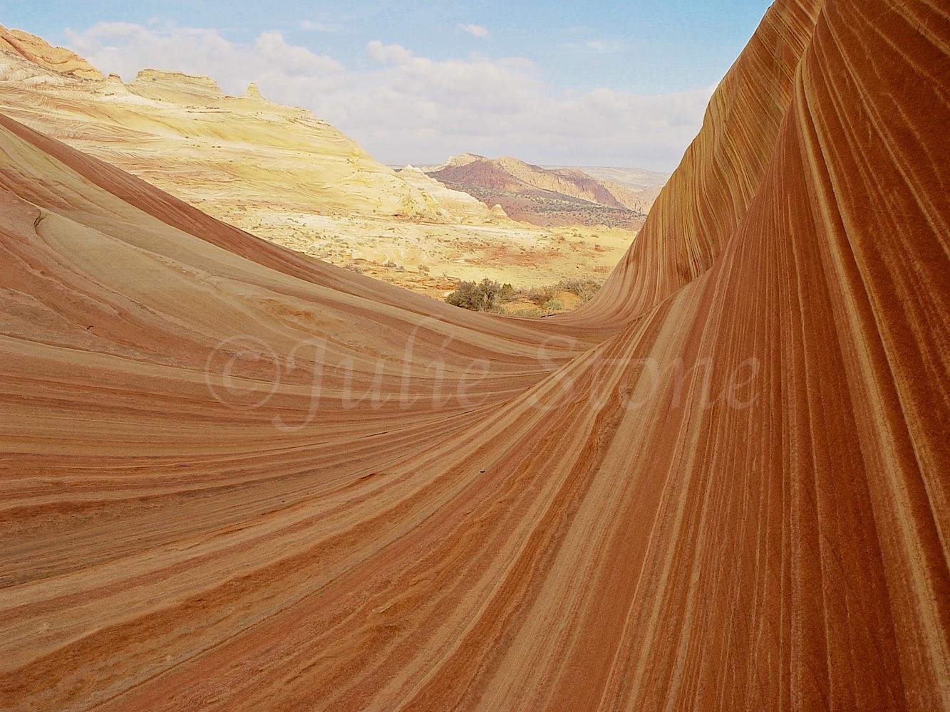 Paria Canyon-Vermilion Cliffs Wilderness 2003 (4)