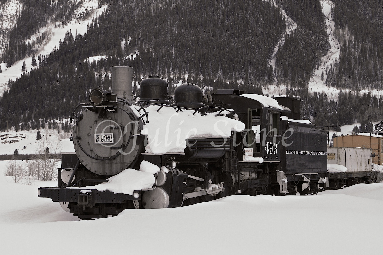 Train 493 Silverton (2013)