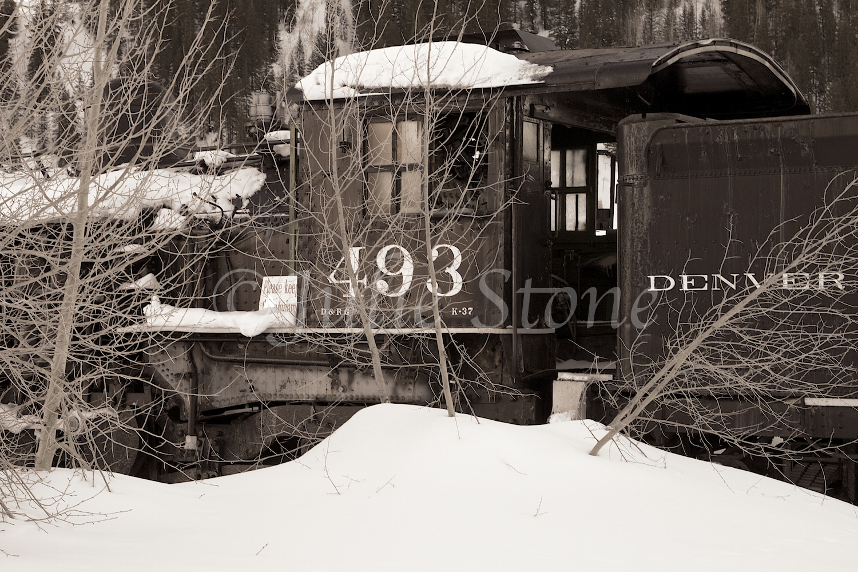 Train 493 Silverton (2013) 2