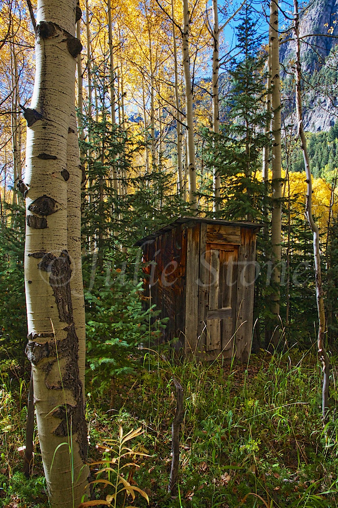 Crystal Ghost Town Outhouse 2014