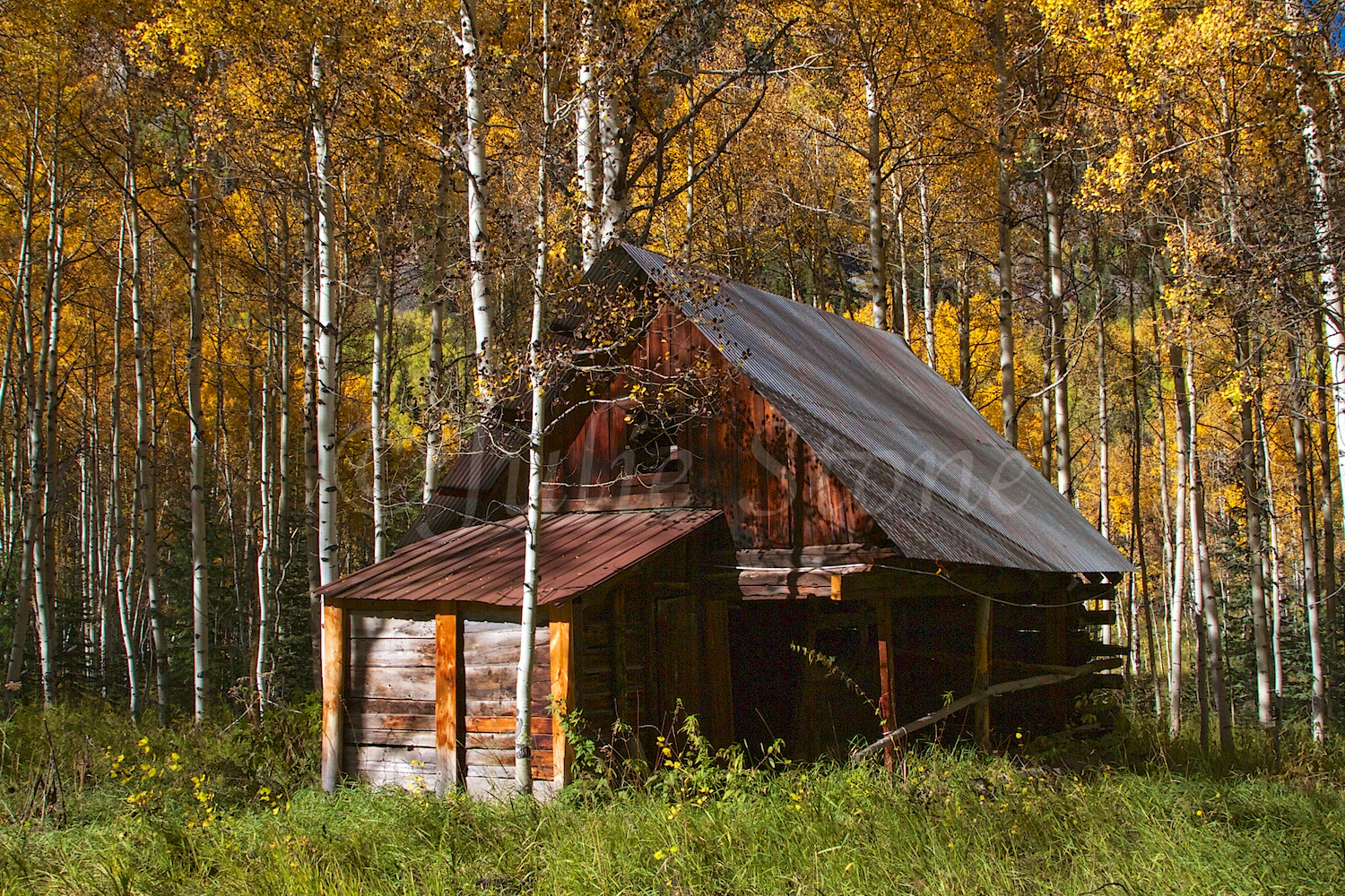 CRYSTAL GHOST TOWN FALL 2014