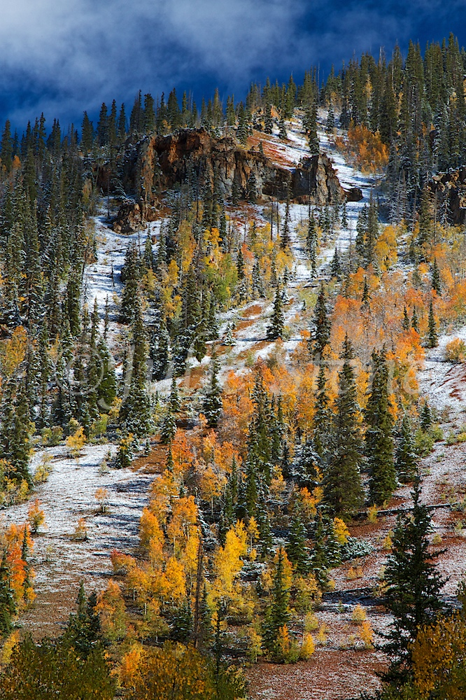 SOUTH MINERAL FALL 2014