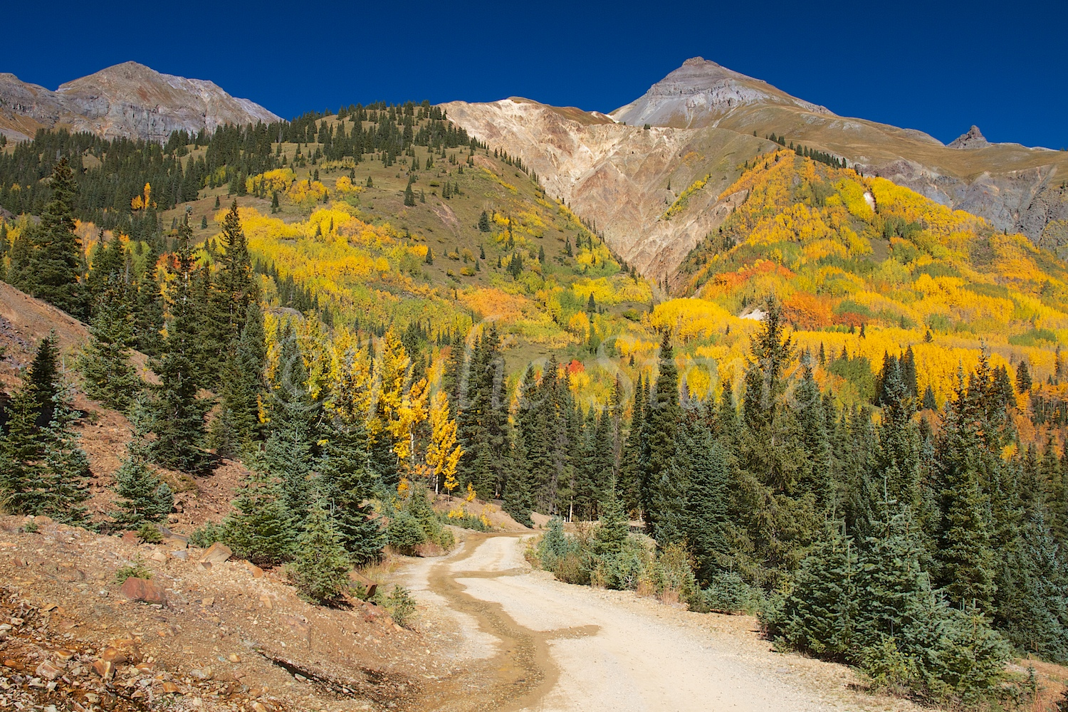 RED MOUNTAIN PASS FALL 2014 (5)