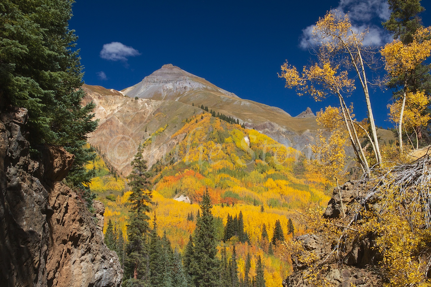 RED MOUNTAIN PASS FALL 2014 (7)