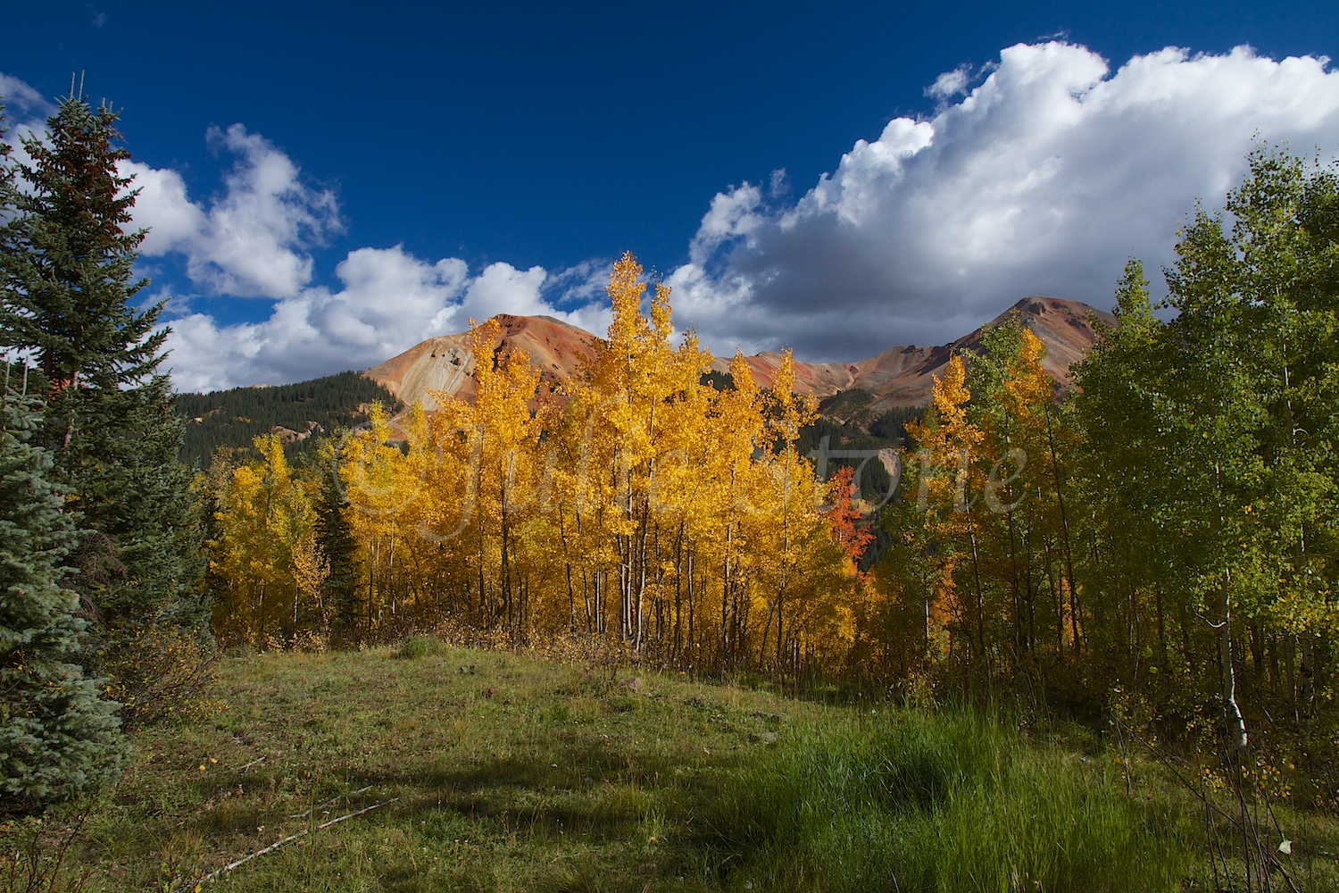 RED MOUNTAIN PASS FALL 2014 (4)