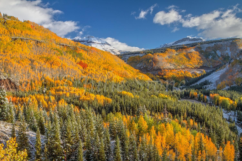 Morning Fall Colors 2014 (14)