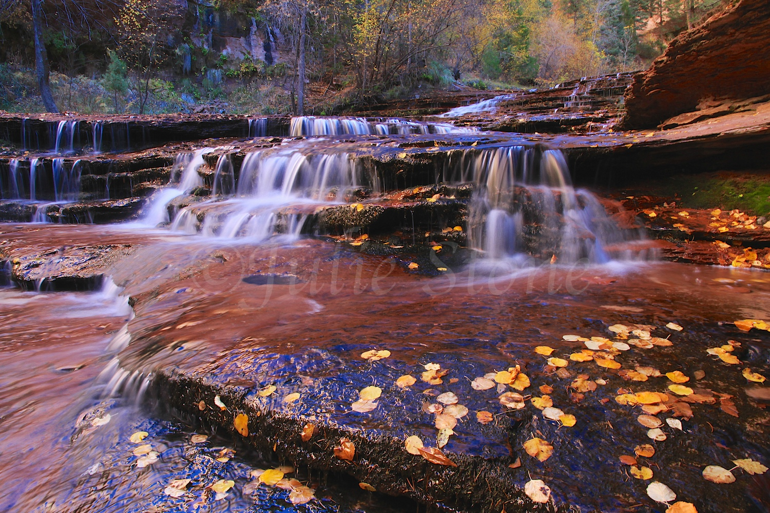 Slickrock Cascades Fall 2014 (5)