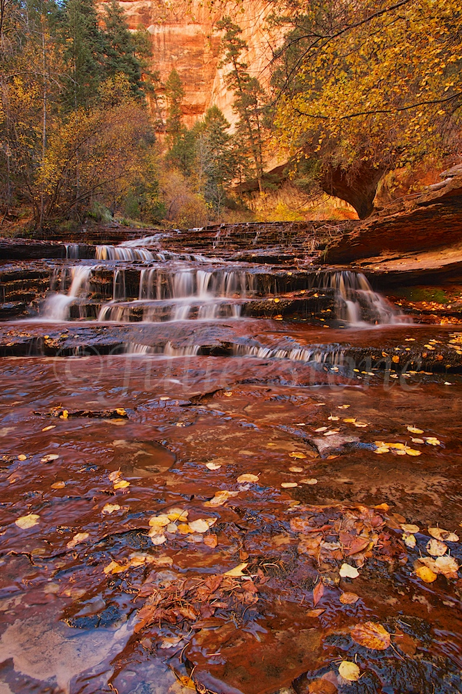 Slickrock Cascades Fall 2014 (7)
