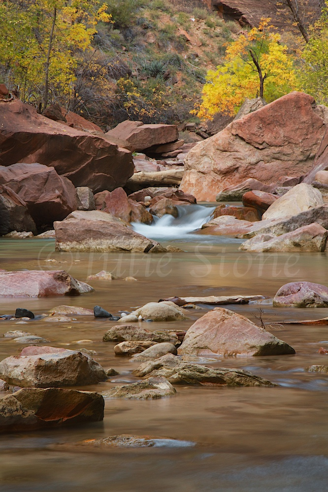 North Fork of the Virgin River Fall 2014 (3)