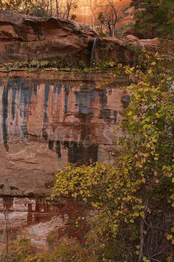 Waterfall at Lower Emerald Pools Fall 2014 (7)
