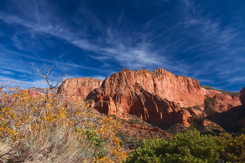 Kolob Canyons Fall 2014 (2)