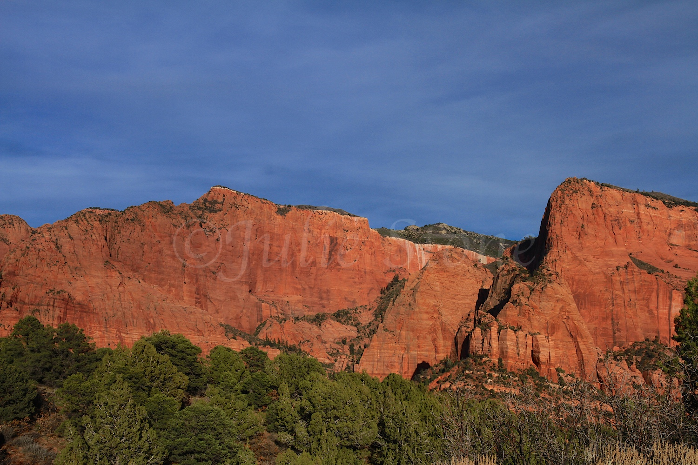 Kolob Canyons Fall 2014 (4)