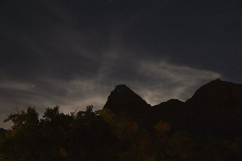 Zion Starry Night 2014