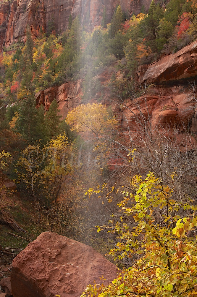 Waterfall at Lower Emerald Pools Fall 2014 (11)