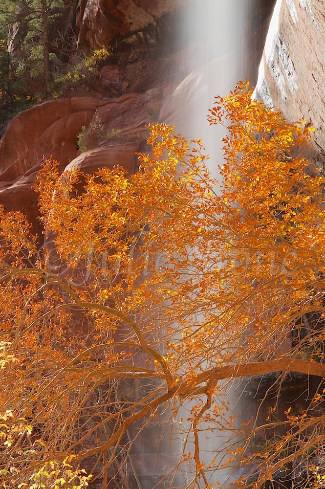 Waterfall at Lower Emerald Pools Fall 2014 (9)