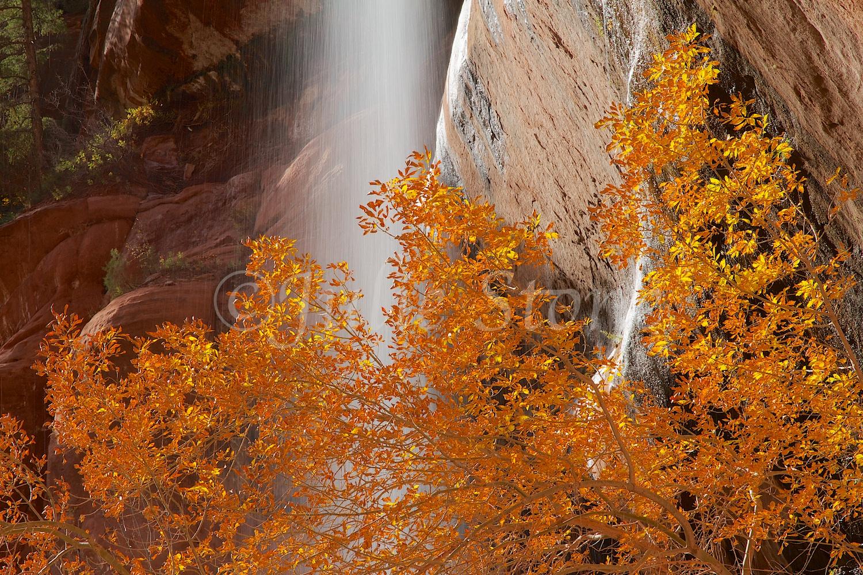 Waterfall at Lower Emerald Pools Fall 2014 (3)