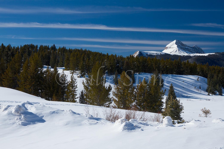 Engineer Mt (Image 2242) December 24, 2014