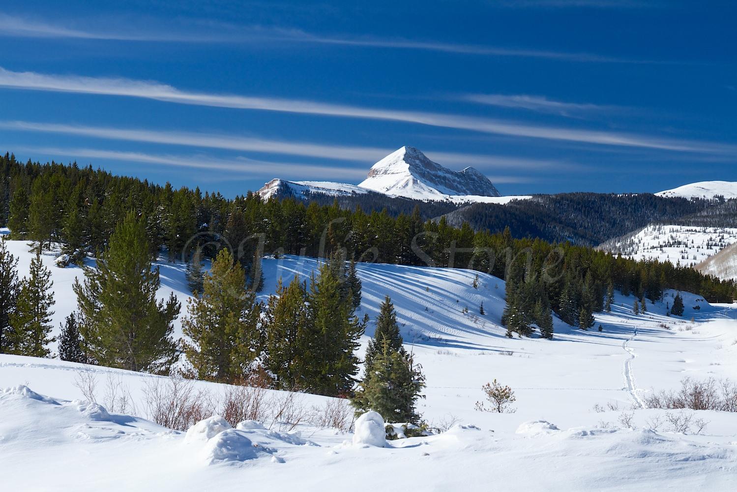 Engineer Mt (Image 2238) December 24, 2014