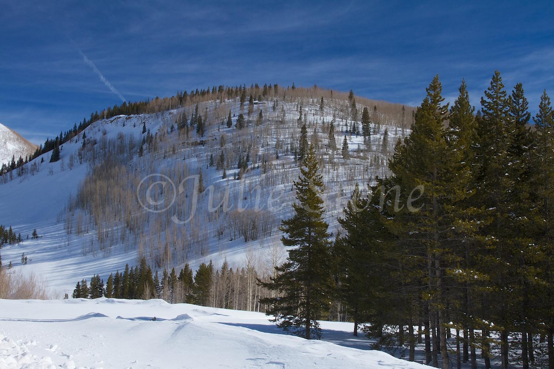Lime Creek (Image 2208) December 24, 2014