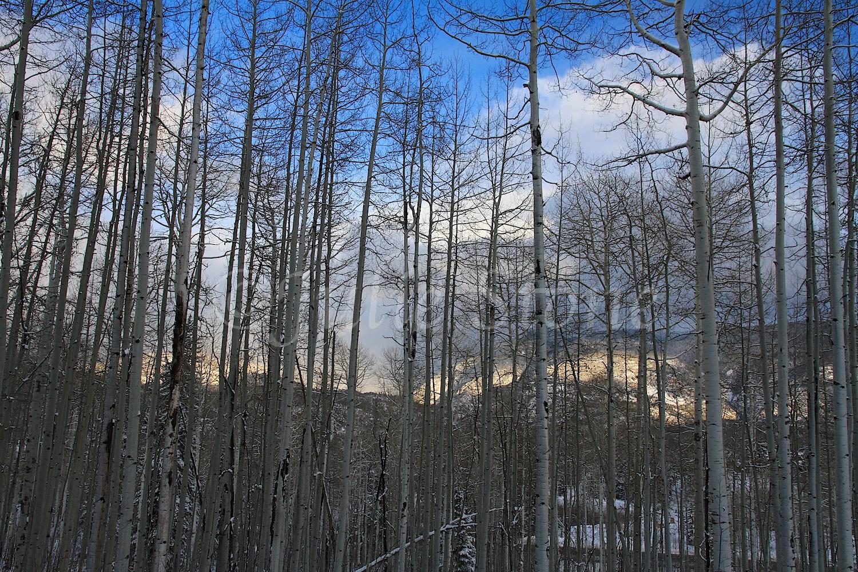 Castle Rock Storm (Image 2702) December 26, 2014