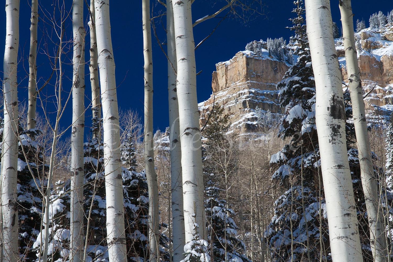 Castle Rock (Image 2978) December 27, 2014
