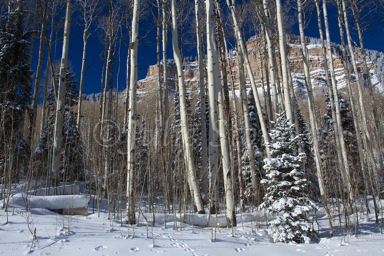 Castle Rock (Image 2868) December 27, 2014