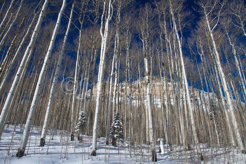 Castle Rock (Image 2846) December 27, 2014