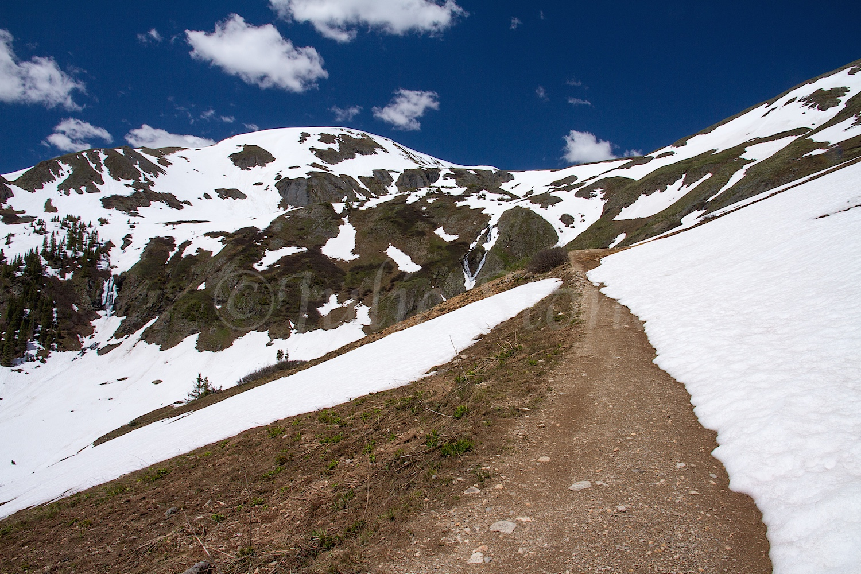 Black Bear Road Image #6557