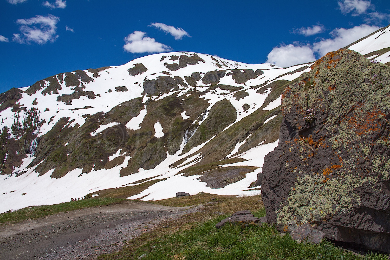 Black Bear Road Image # 6596