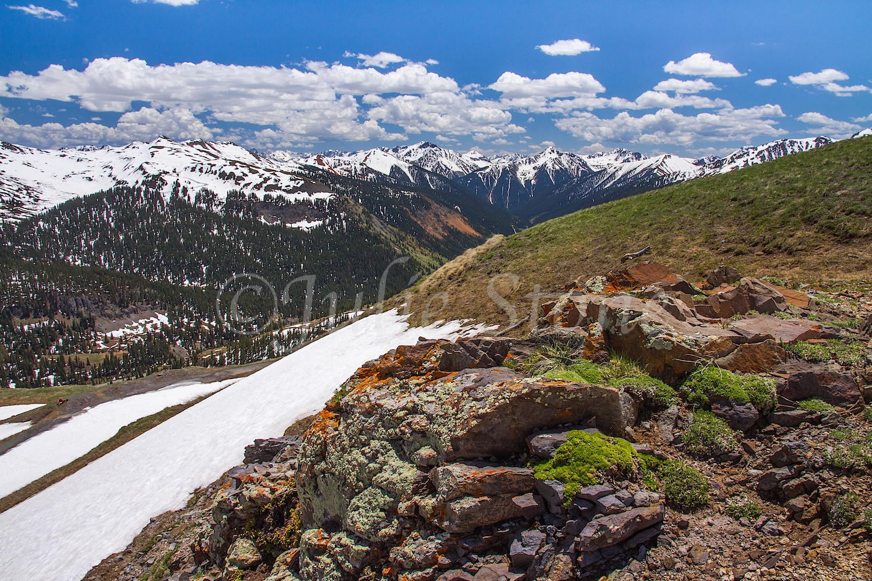 Black Bear Road Image # 7043