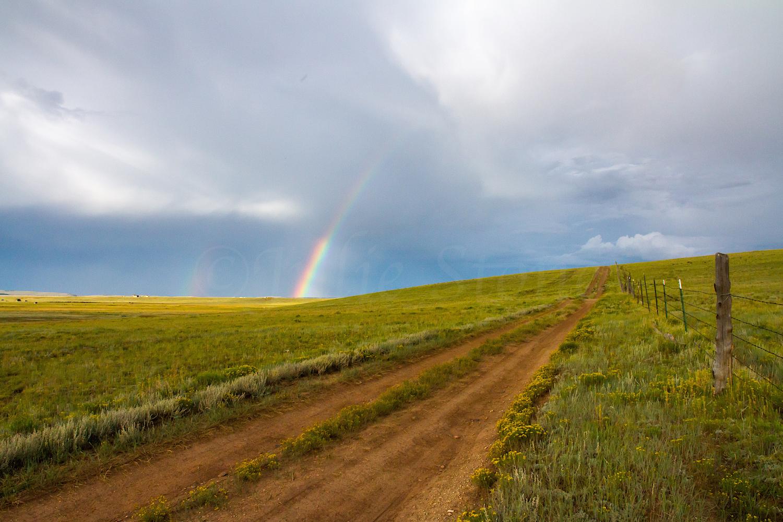 Fairplay Rainbow, Image #3343