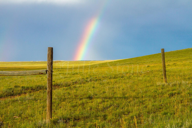 Fairplay Rainbow, Image #3359