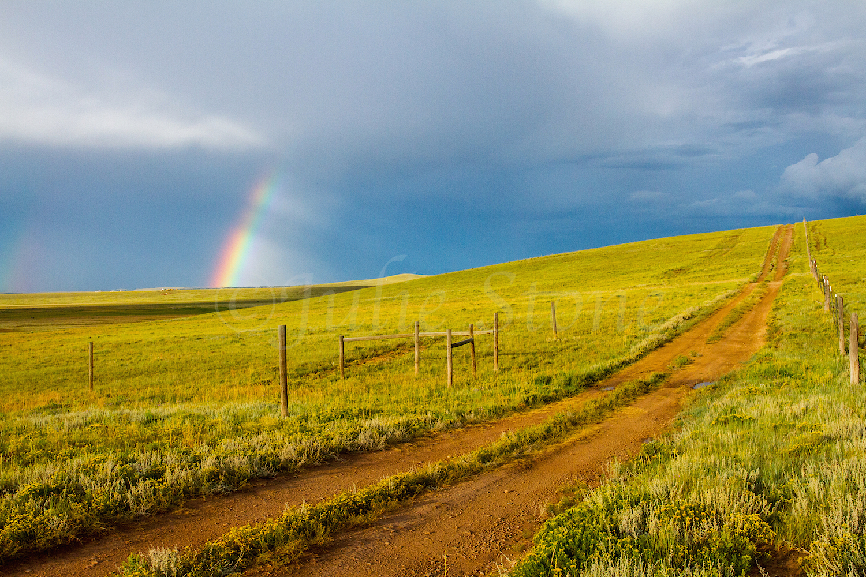 Fairplay Rainbow, Image #3391