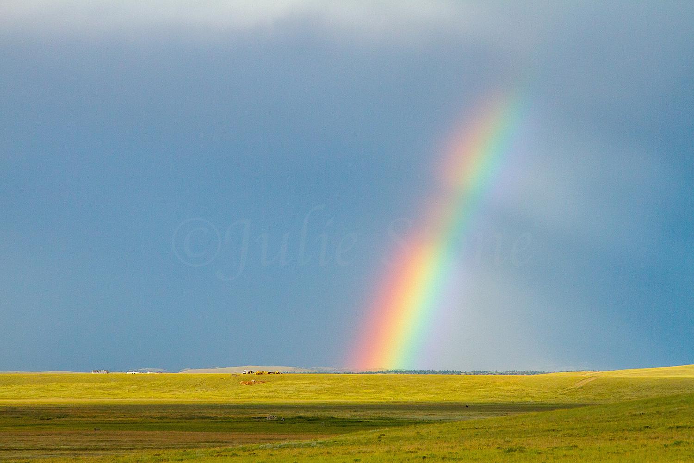 Fairplay Rainbow, Image #3374