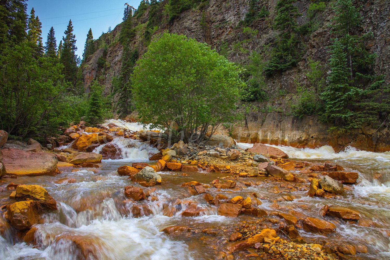 Uncompahgre River Gorge Falls,Image #9893