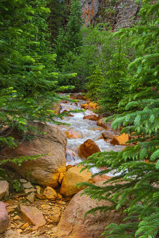 Uncompahgre River Gorge Falls, Image #9930