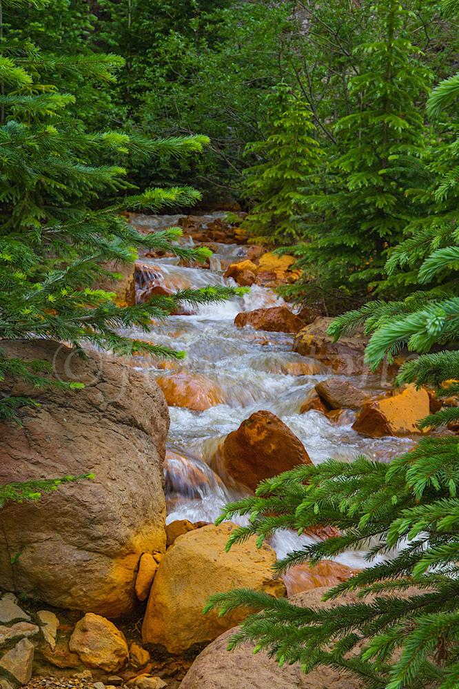Uncompahgre River Gorge Falls, Image #9931