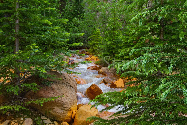 Uncompahgre River Gorge Falls, Image #9937