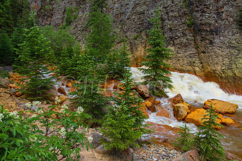 Uncompahgre River Gorge Falls, Image #9976