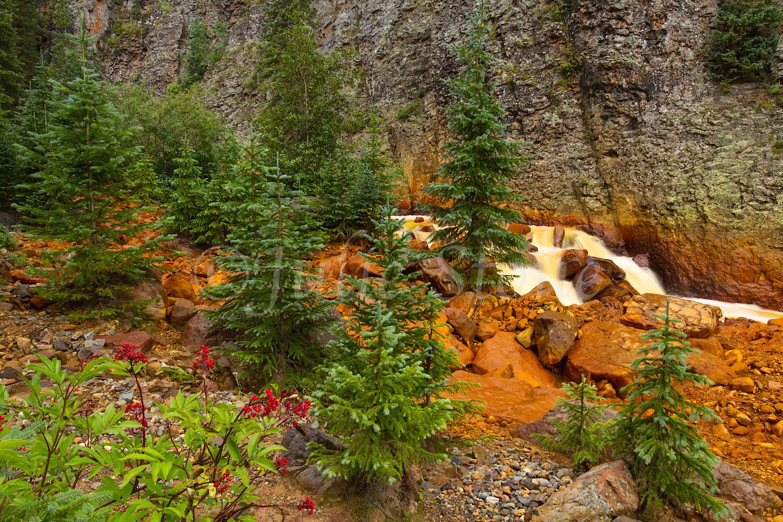 Uncompahgre River Gorge Falls, Image #4308