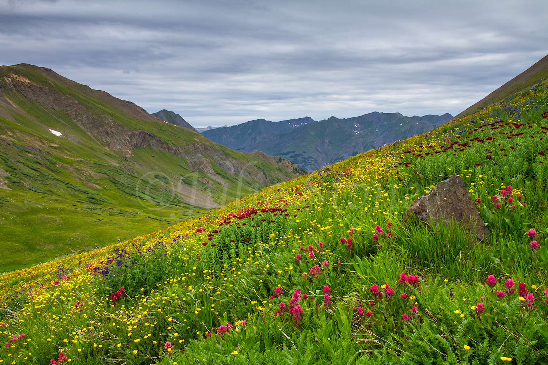 Stoney Pass, Image #6659