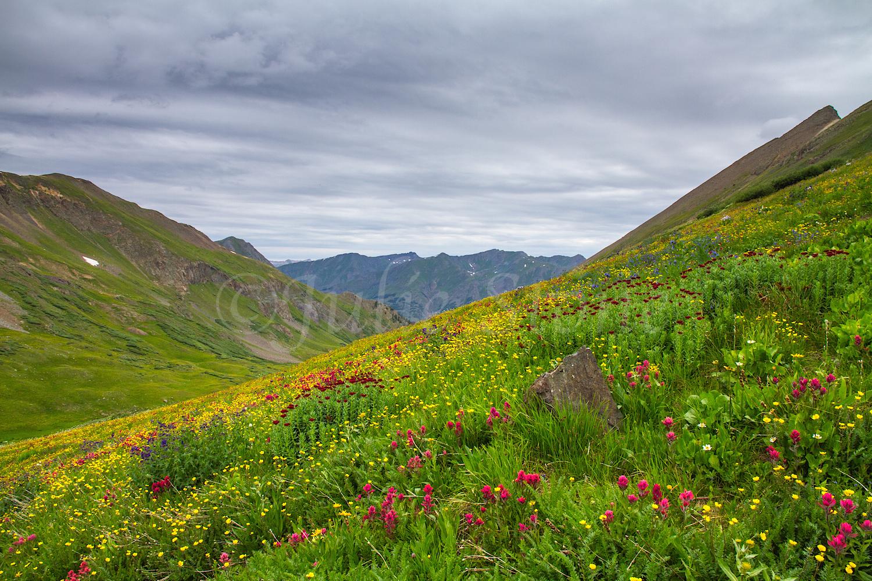 Stoney Pass, Image #6667